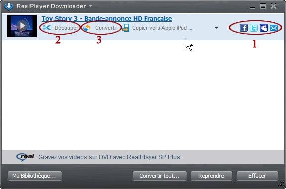capture d'écran gestionnaire realplayer2